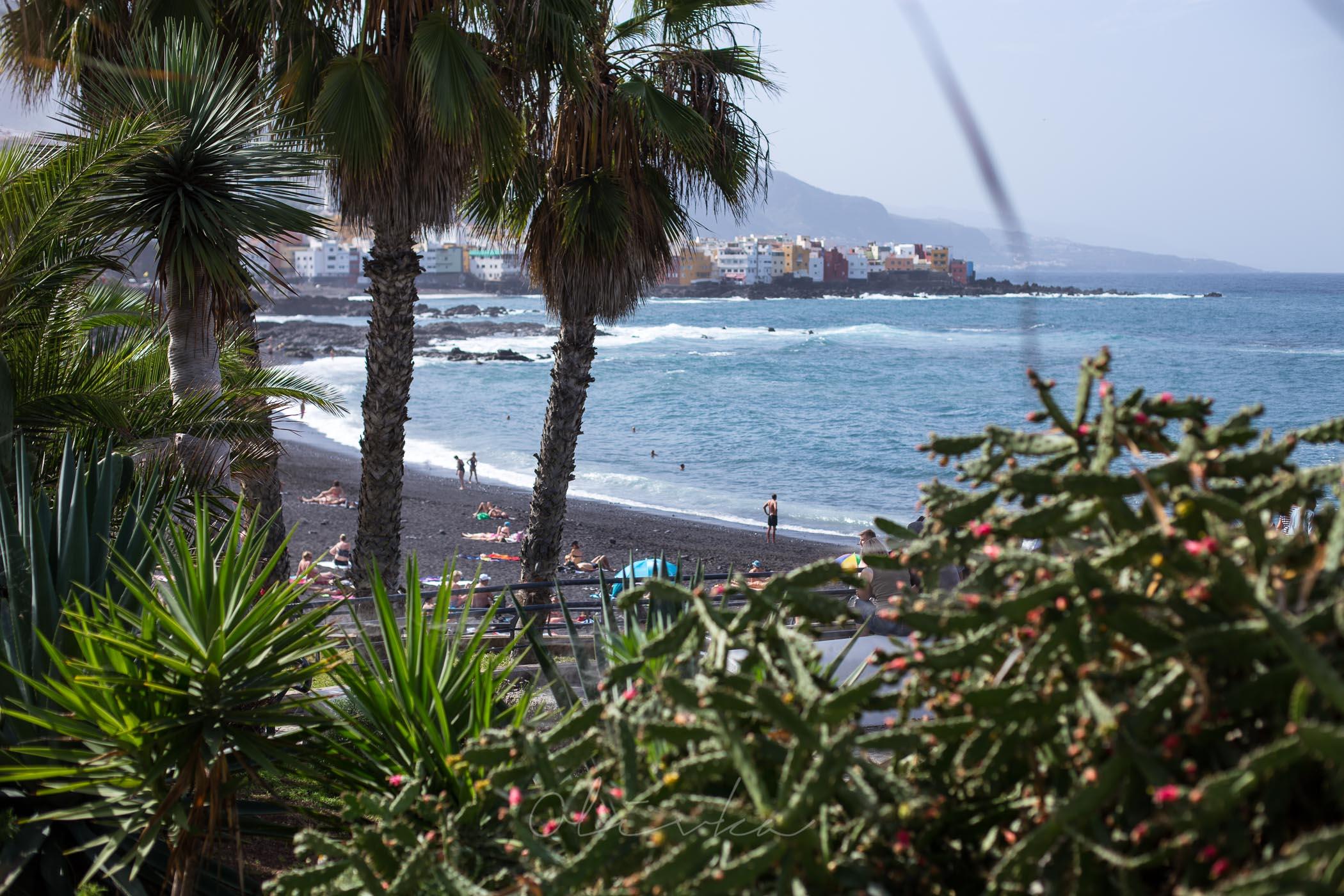 Bujna roślinność niedaleko plaży La Arena