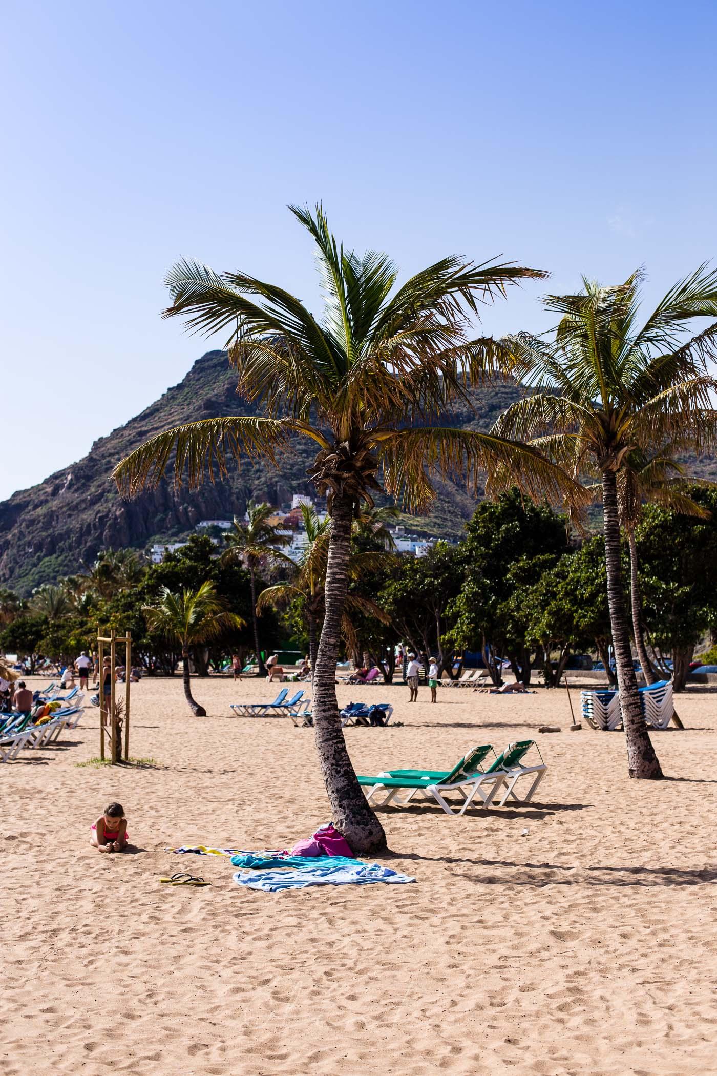 Plażowanie w cieniu palm